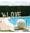 Photocall letras love luminosas